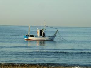 Her fiskes tæt på stranden